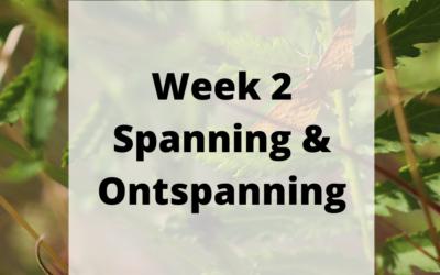 Week 2 – Spanning & Ontspanning